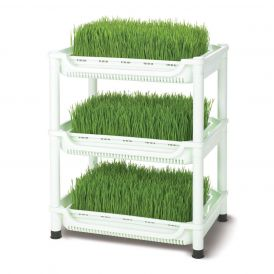 Sproutman SM-350 Soil-Free Wheatgrass Grower